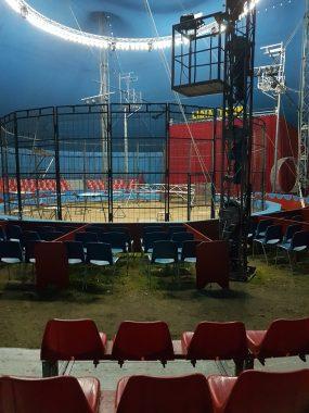 Il Circo Lidia Togni saluta Ischia dopo lo straordinario successo !