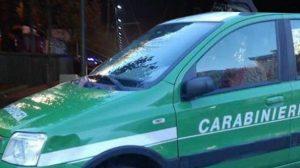 Carabinieri Forestale di Avellino