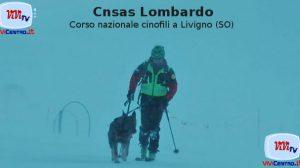 Cnsas Lombardo - Corso nazionale cinofili a Livigno (SO)