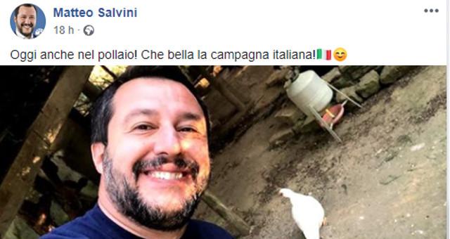 Salvini con i polli sul suo FB 010419
