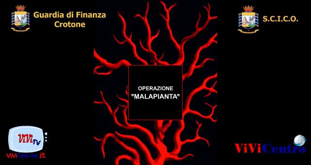 Guardia di Finanza Crotone Operazione Malapianta