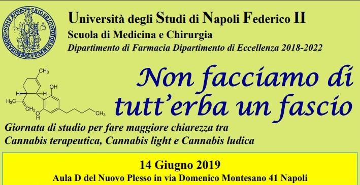 """Napoli Università degli Studi Federico II:Cannabis""""non facciamo di tutt'erba un fascio"""""""