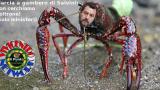 Marcia a gambero di Salvini