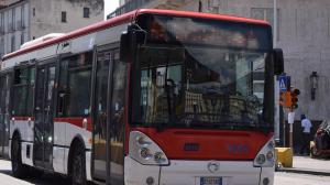 anm autobus pullman foto free google