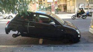 ladri di pneumatici rubati foto free facebook consigliere borrelli