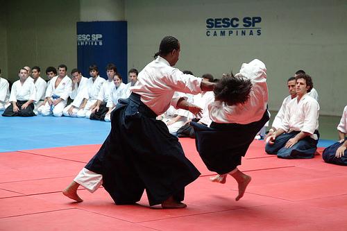 Sorrento stage di Aikido