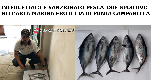INTERCETTATO E SANZIONATO PESCATORE SPORTIVO a PUNTA CAMPANELLA