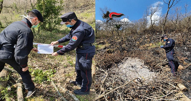 Mezzojuso due uomini del posto tagliavano radicalmente gli alberi
