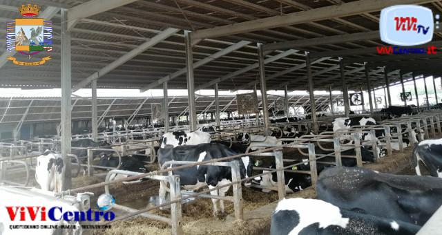 Inquinamento ambientale, sequestrata azienza agricola a Robecco D'Oglio (CR)