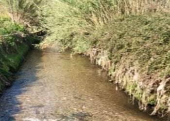 """Fiume Sarno: """"#Noi Sempre tra Voi"""" diffida gli Enti preposti a intervenire fiume sarno acqua trasparente coronavirus foto free"""