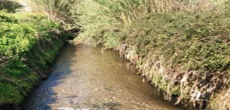 fiume sarno acqua trasparente coronavirus foto free