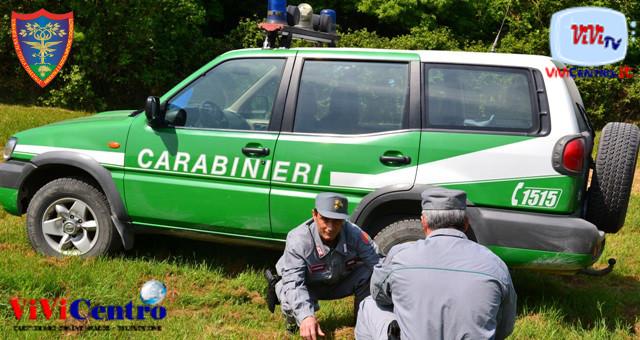 carabinieri forestali, Combustione illecita rifiuti