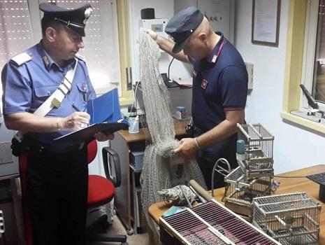 hanno arrestato due persone per furto venatorio e maltrattamento di animali