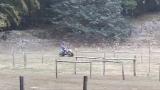 faito gare go kart