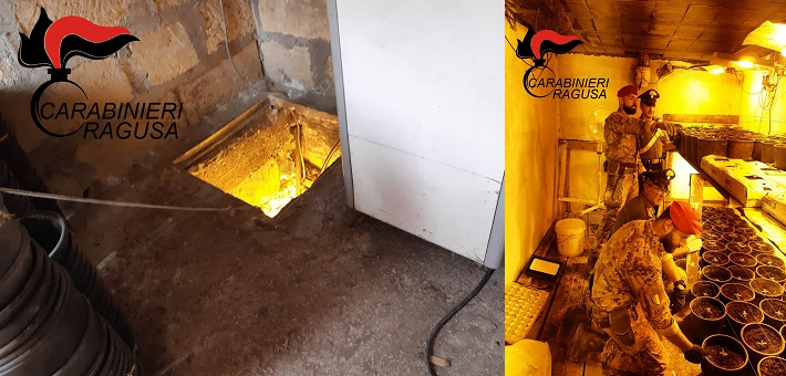 coltivava la piantagione di marijuana nascosta in un bunker sotterraneo