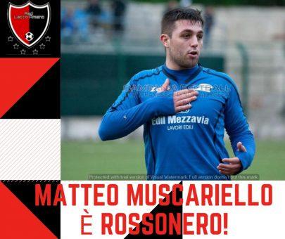 Ufficiale: Matteo Muscariello è un nuovo giocatore del Lacco Ameno