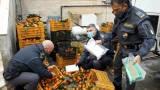 Intercettato sulla A/20 un furgoncino con cui i due corrieri trasportavano 10 kg di cocaina