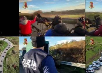 La Polizia di Agrigento ha bloccato una corsa clandestina di cavalli