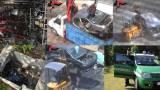 I CC forestali di Palermo hanno sgominato un'associazione
