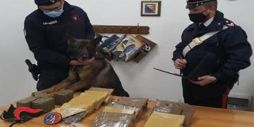 7 le persone in arresto dai Carabinieri a Palermo