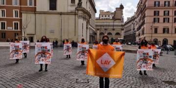Flòah mob LAV a Roma