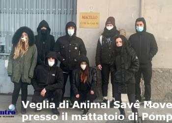 Pompei, attivisti in protesta contro le attività dei mattatoi