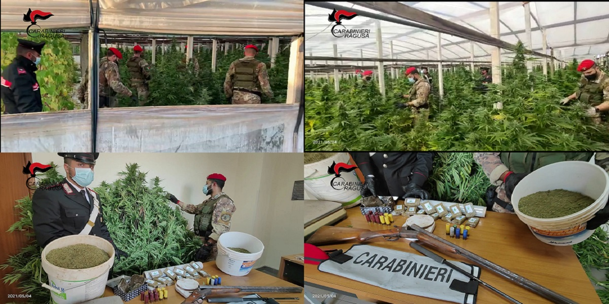 arrestati un vittoriese e un tunisino per coltivazione, spaccio e detenzione armi e munizioni