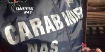 I Carabinieri del Nas di Palermo hanno sequestrato 5 mila e 400 chili di ricotta
