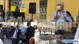 "Brutta sensazione a Piazza Colonna, 4 gatti e tanti ""cani"" a vigilare"