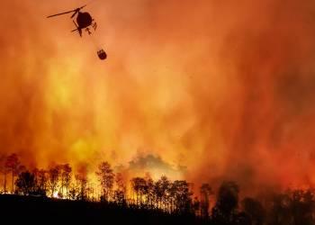 Allerta Meteo Incendi Boschivi (foto dal Ministero dell'Ambiente)